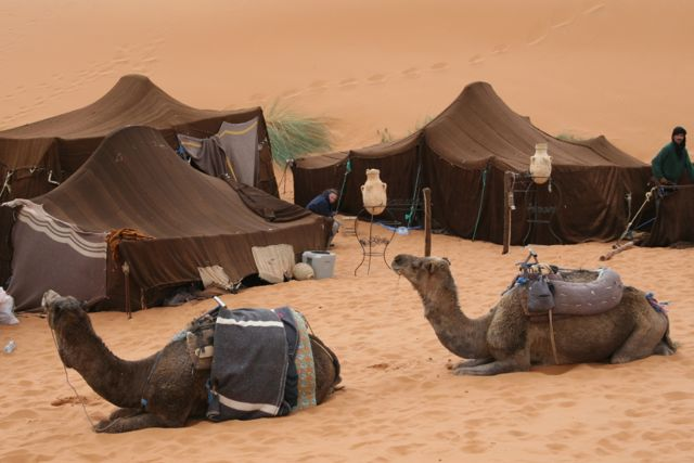 Erg Chebbi Camp