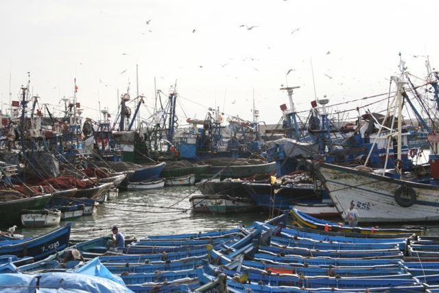 Esaouira Harbour